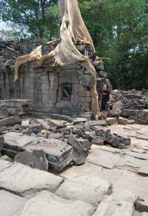 La naturaleza ha devorado los templos del imperio jemer.